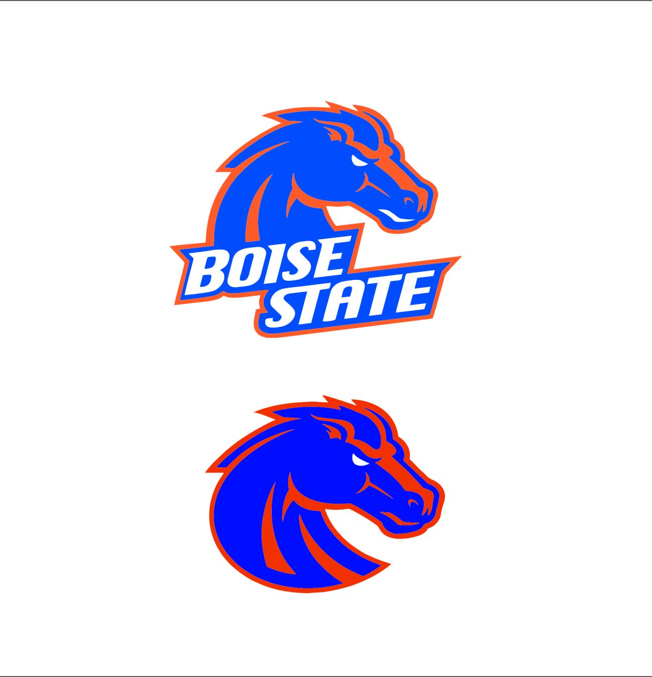 Boise State Broncos1