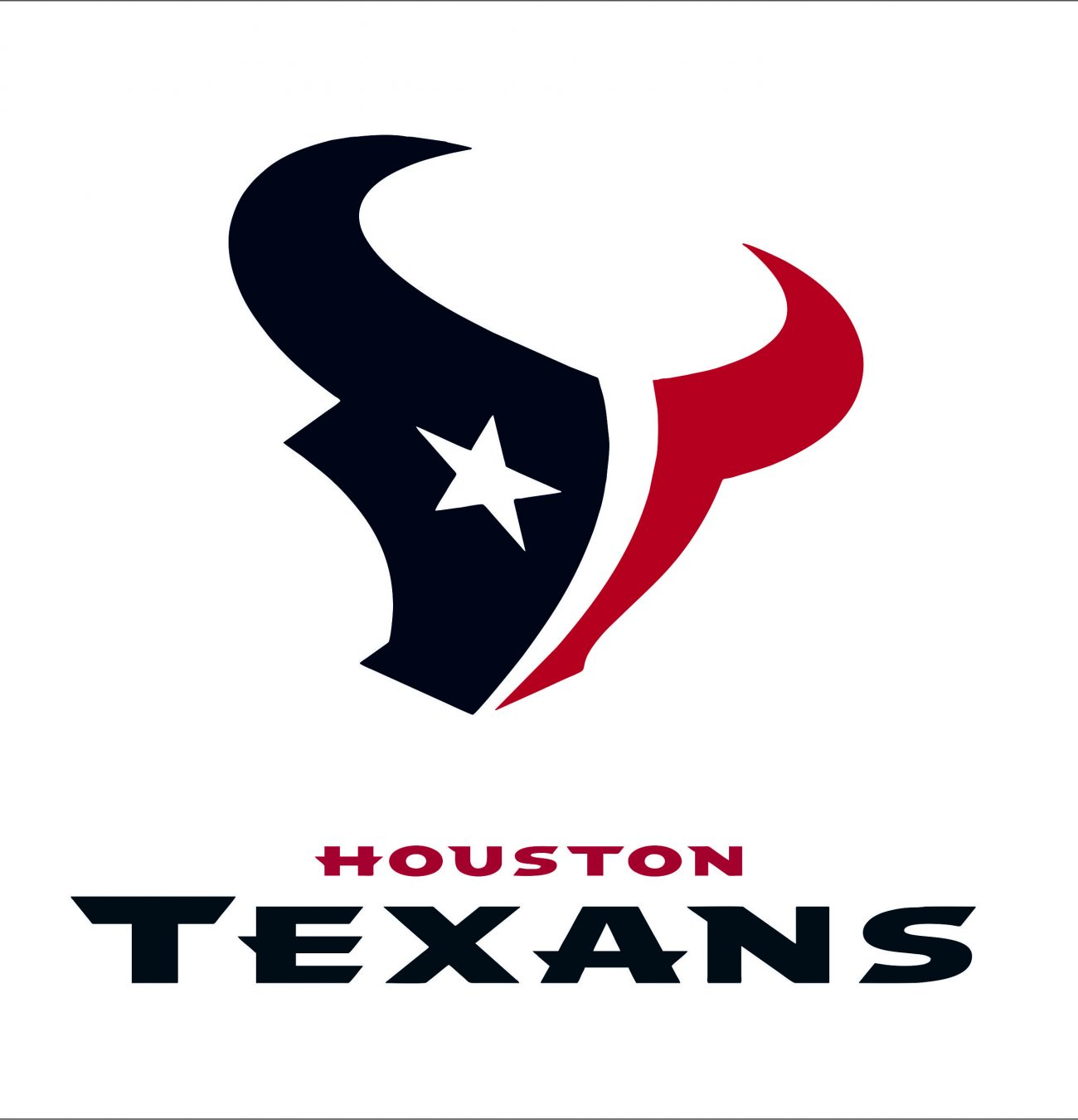 Houston Texans1