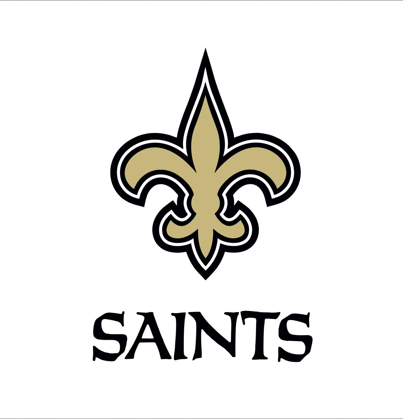 New Orleans Saints1